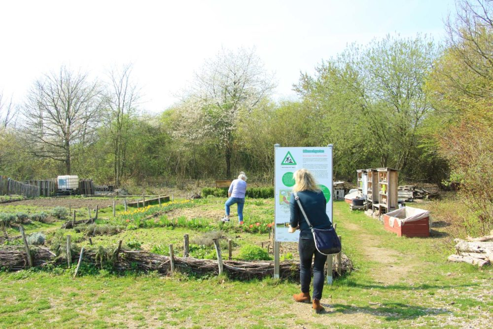Projekt Dorfgarten @ Lehrke